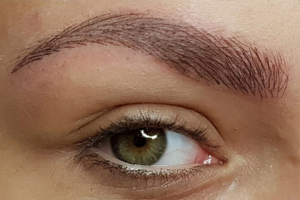 Beautiful eyebrows every day