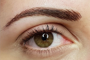 Natural permanent Brows